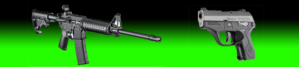 Sample Research Paper on Federally Regulated Weapons - Post banner