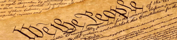 Research Paper on The First Amendment: Crowdsourcing Liberty - Post banner