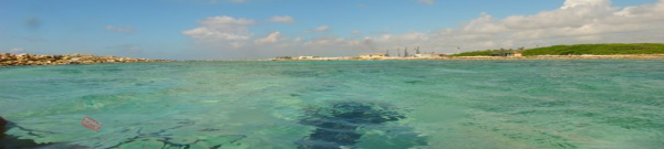 Sample Environmental Science Research Paper on Marine Pollution - Post banner