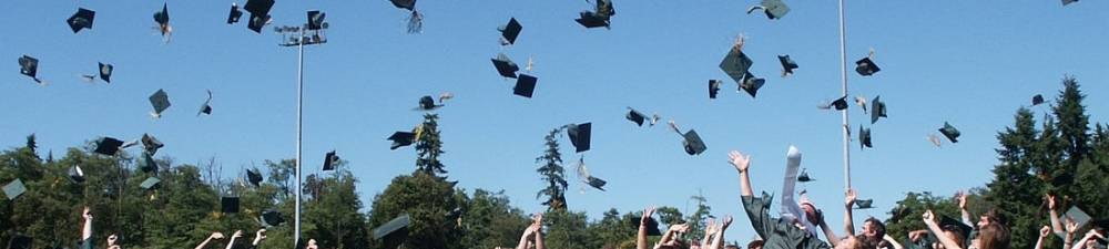 Navigating Employment and Income Inequality as a College Graduate