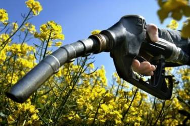 Write a persuasion essay about why people should use biodiesel?