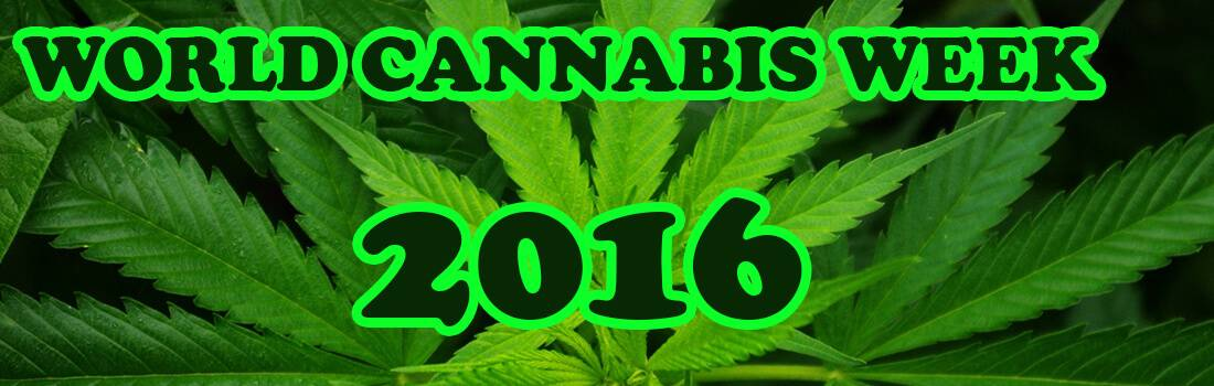 2000-Word Essay on World Cannabis Week 2016 - Post banner