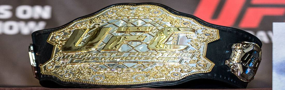 Model Business Research Report on the $4.2 Billion Sale of the UFC. That's Billion with a