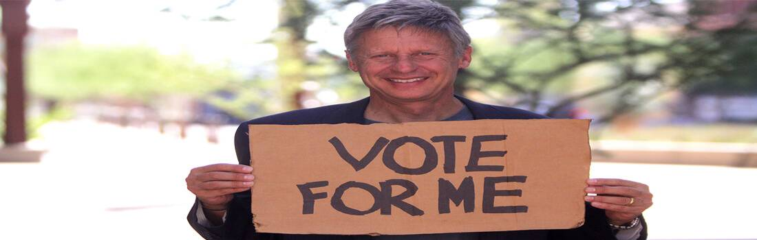 Red, Blue, and Green? A Sample Argumentative Essay on Third-Party Candidate Gary Johnson - Post banner