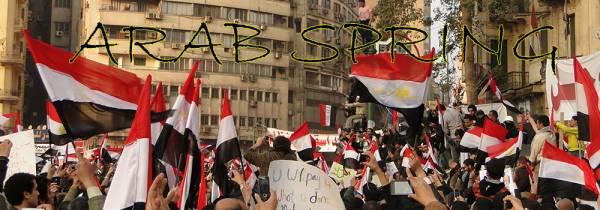 arab originate inside egypt essays