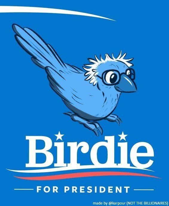 Image of Bernie Sanders depicted as bird.