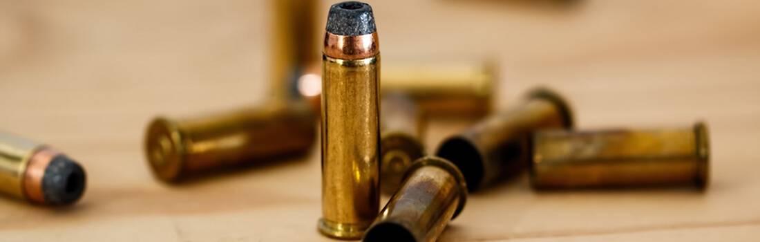 pro gun control debate essay