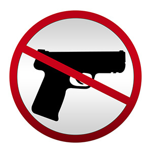Blog post - Argument in Favor of Gun Regulation