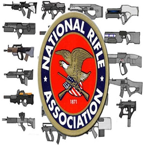 Blog post | Critical Essay on The National Rifle Association's Argument against Gun Control